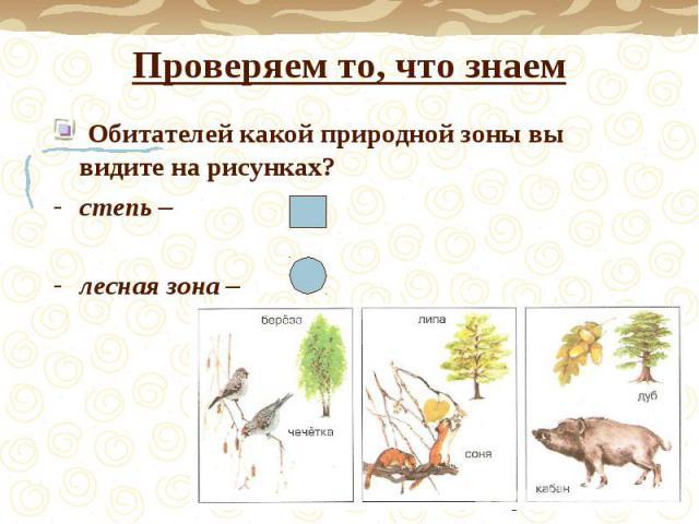 Проверяем то, что знаем Обитателей какой природной зоны вы видите на рисунках?степь – лесная зона –