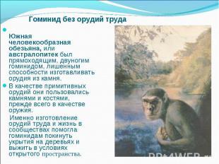 Гоминид без орудий труда Южная человекообразная обезьяна, или австралопитек был