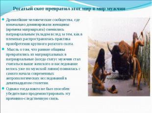 Рогатый скот превратил этот мир в мир мужчин Древнейшие человеческие сообщества,
