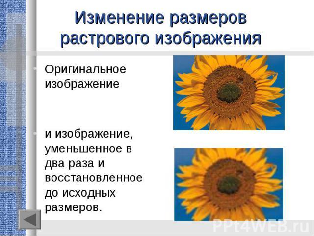 Изменение размеров растрового изображенияОригинальное изображениеи изображение, уменьшенное в два раза ивосстановленное до исходных размеров.