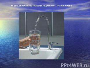 За всю свою жизнь человек потребляет 75 тонн воды!