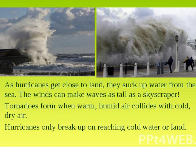 As hurricanes get close to land, they suck up water from the sea. The winds can make waves as tall as a skyscraper!Tornadoes form when warm, humid air collides with cold, dry air. •Hurricanes only break up on reaching cold water or land.