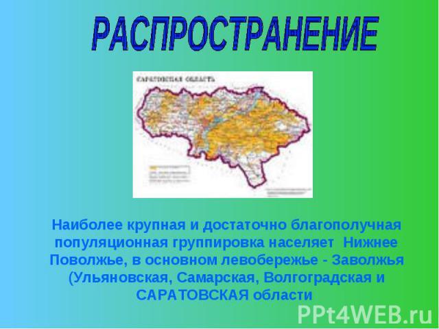 РАСПРОСТРАНЕНИЕНаиболее крупная и достаточно благополучная популяционная группировка населяет Нижнее Поволжье, в основном левобережье - Заволжья (Ульяновская, Самарская, Волгоградская и САРАТОВСКАЯ области