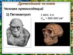 Древнейший человекЧеловек прямоходящий1) Питекантроп1 млн. л.н.Vгм = 800-900 см3