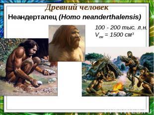 Древний человекНеандерталец (Homo neanderthalensis)100 - 200 тыс. л.н.Vгм = 1500