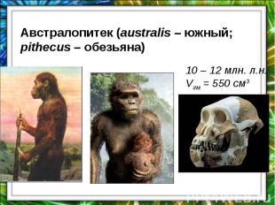 Австралопитек (australis – южный; pithecus – обезьяна)10 – 12 млн. л.н.Vгм = 550