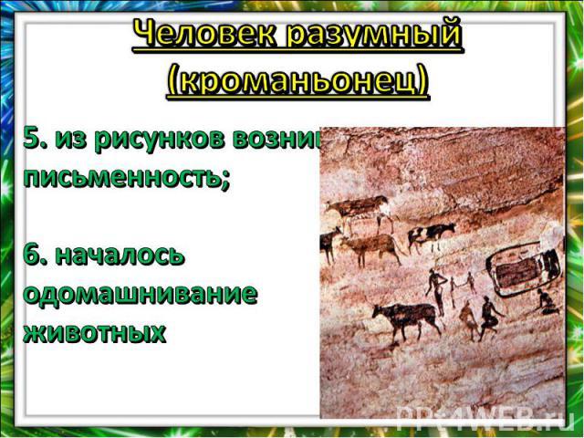 Человек разумный (кроманьонец)5. из рисунков возникла письменность;6. началось одомашнивание животных