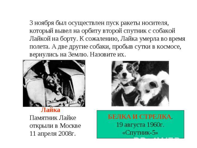 3 ноября был осуществлен пуск ракеты носителя,который вывел на орбиту второй спутник с собакой Лайкой на борту. К сожалению, Лайка умерла во времяполета. А две другие собаки, пробыв сутки в космосе,вернулись на Землю. Назовите их. ЛайкаПамятник Лайк…