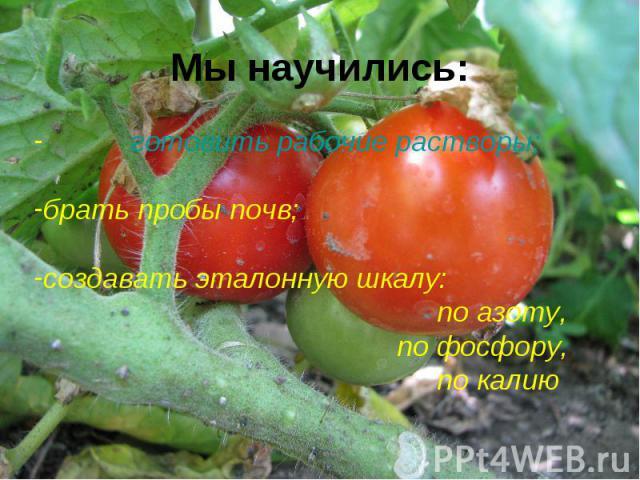 Мы научились: готовить рабочие растворы;брать пробы почв;создавать эталонную шкалу: по азоту, по фосфору, по калию