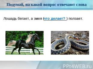 Подумай, на какой вопрос отвечают словаЛошадь бегает, а змея (___________)ползае