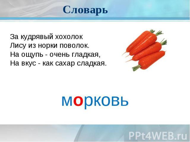 СловарьЗа кудрявый хохолокЛису из норки поволок.На ощупь - очень гладкая,На вкус - как сахар сладкая.морковь