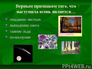 Верным признаком того, что наступила осень является… опадание листьев выпадение
