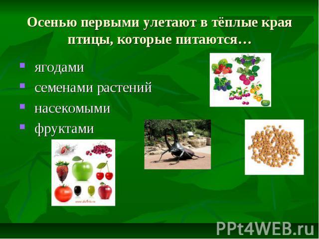 Осенью первыми улетают в тёплые края птицы, которые питаются… ягодами семенами растений насекомыми фруктами