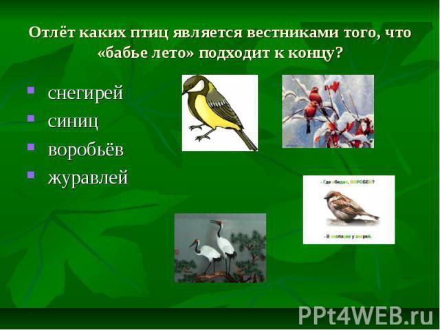 Отлёт каких птиц является вестниками того, что «бабье лето» подходит к концу? снегирей синиц воробьёв журавлей