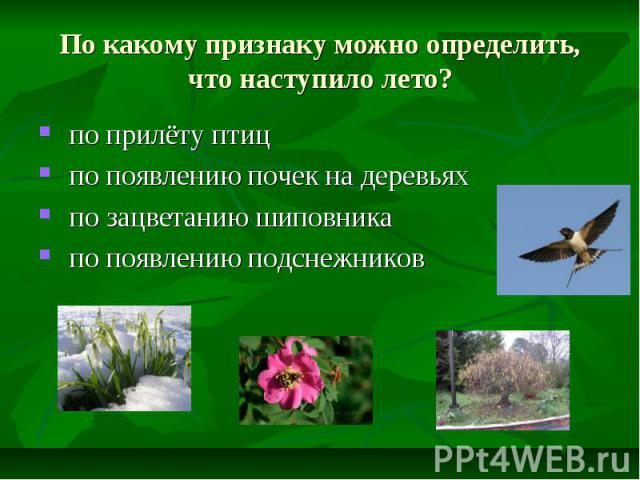 По какому признаку можно определить, что наступило лето? по прилёту птиц по появлению почек на деревьях по зацветанию шиповника по появлению подснежников