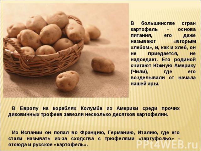 В большинстве стран картофель - основа питания, его даже называют «вторым хлебом», и, как и хлеб, он не приедается, не надоедает. Его родиной считают Южную Америку (Чили), где его возделывали от начала нашей эры.В Европу на кораблях Колумба из Амери…