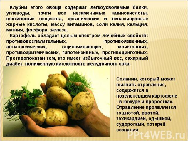 Клубни этого овоща содержат легкоусвояемые белки, углеводы, почти все незаменимые аминокислоты, пектиновые вещества, органические и ненасыщенные жирные кислоты, массу витаминов, соли калия, кальция, магния, фосфора, железа.Картофель обладает целым с…