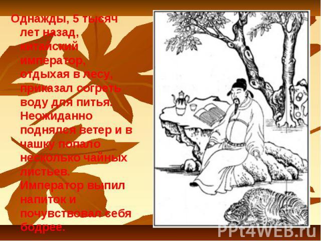 Однажды, 5 тысяч лет назад, китайский император, отдыхая в лесу, приказал согреть воду для питья. Неожиданно поднялся ветер и в чашку попало несколько чайных листьев. Император выпил напиток и почувствовал себя бодрее.