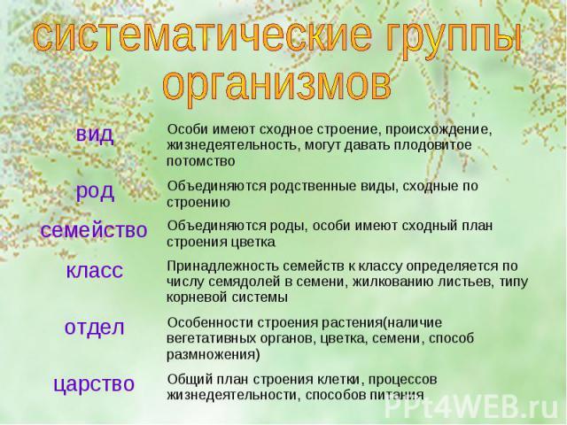 систематические группы организмов
