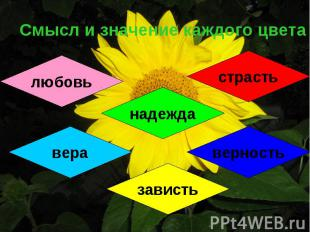 Смысл и значение каждого цвета