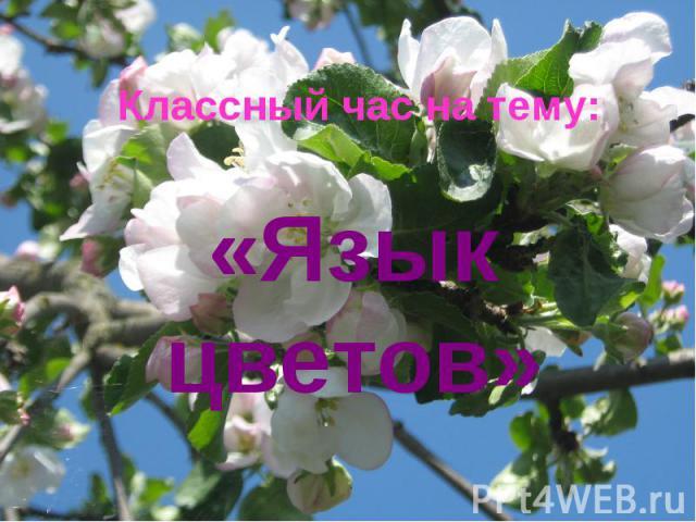 Классный час на тему: «Язык цветов»