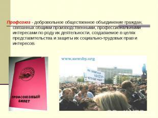 Профсоюз - добровольное общественное объединение граждан, связанных общими произ