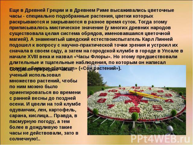 Еще в Древней Греции и в Древнем Риме высаживались цветочные часы - специально подобранные растения, цветки которых раскрываются и закрываются в разное время суток. Тогда этому приписывалось мистическое значение (у многих древних народов существовал…
