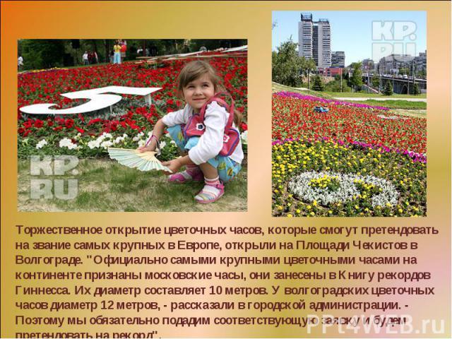 Торжественное открытие цветочных часов, которые смогут претендовать на звание самых крупных в Европе, открыли на Площади Чекистов в Волгограде.