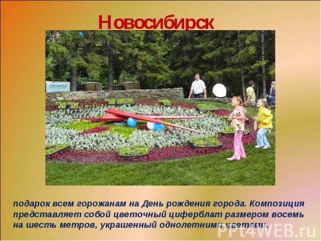 Новосибирскподарок всем горожанам на День рождения города. Композиция представляет собой цветочный циферблат размером восемь на шесть метров, украшенный однолетними цветами.