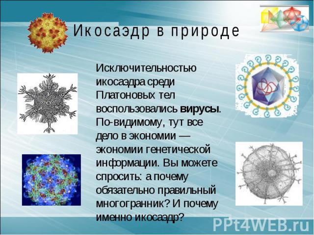 Икосаэдр в природеИсключительностью икосаэдра среди Платоновых тел воспользовались вирусы. По-видимому, тут все дело в экономии — экономии генетической информации. Вы можете спросить: а почему обязательно правильный многогранник? И почему именно икосаэдр?