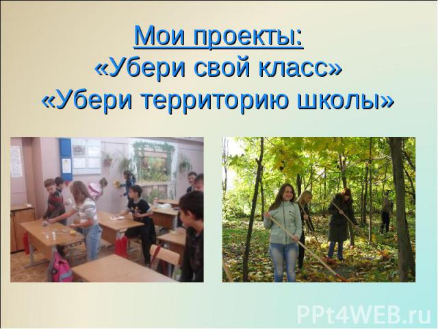 Мои проекты:«Убери свой класс»«Убери территорию школы»