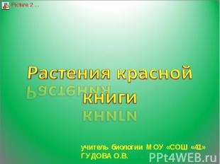 Растения красной книги учитель биологии МОУ «СОШ «41» ГУДОВА О.В.
