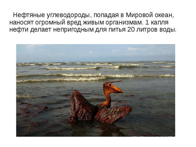 Нефтяные углеводороды, попадая в Мировой океан, наносят огромный вред живым организмам. 1 капля нефти делает непригодным для питья 20 литров воды.