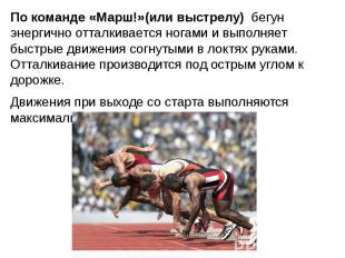 По команде «Марш!»(или выстрелу) бегун энергично отталкивается ногами и выполняе