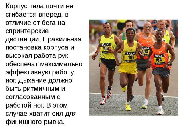 Корпус тела почти не сгибается вперед, в отличие от бега на спринтерские дистанции. Правильная постановка корпуса и высокая работа рук обеспечат максимально эффективную работу ног. Дыхание должно быть ритмичным и согласованным с работой ног. В этом …