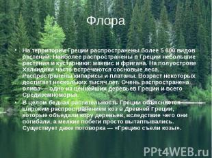 На территории Греции распространены более 5 000 видов растений. Наиболее распрос