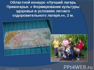 Областной конкурс «Лучший лагерь Приангарья. « Формирование культуры здоровья в