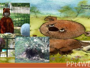 Медведь… Лисья нора