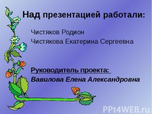 Над презентацией работали: Чистяков Родион Чистякова Екатерина Сергеевна Руковод