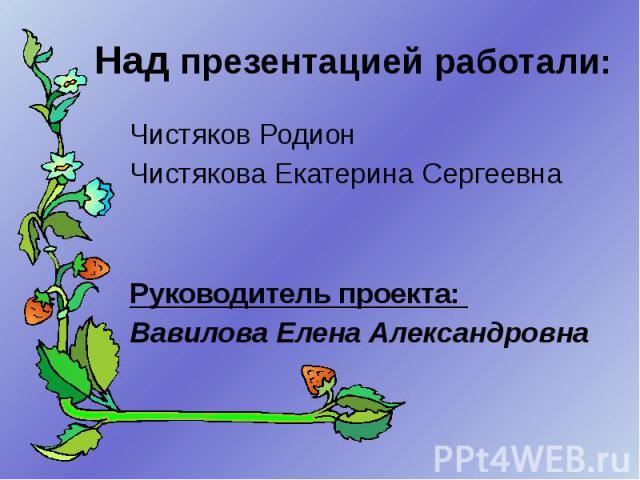 Над презентацией работали: Чистяков Родион Чистякова Екатерина Сергеевна Руководитель проекта: Вавилова Елена Александровна
